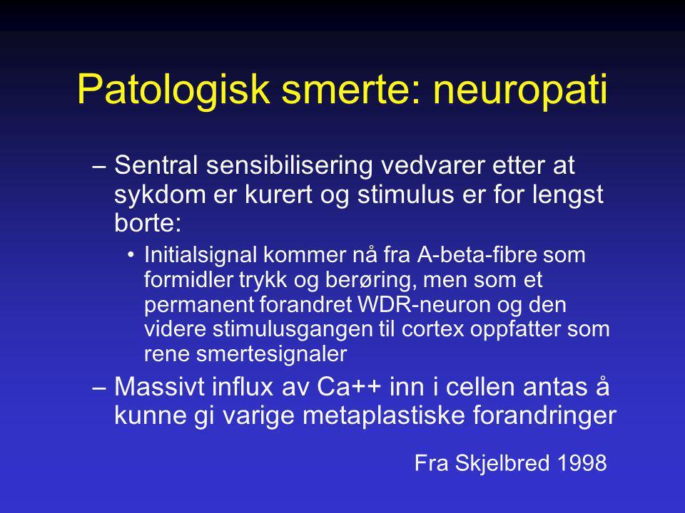Patologisk smerte: neuropati