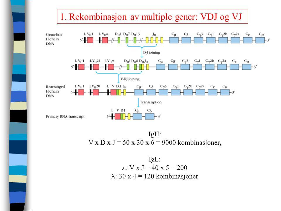 V x D x J = 50 x 30 x 6 = 9000 kombinasjoner,