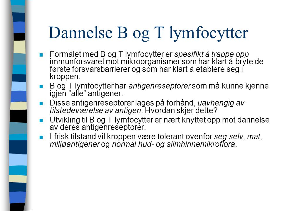 Dannelse B og T lymfocytter