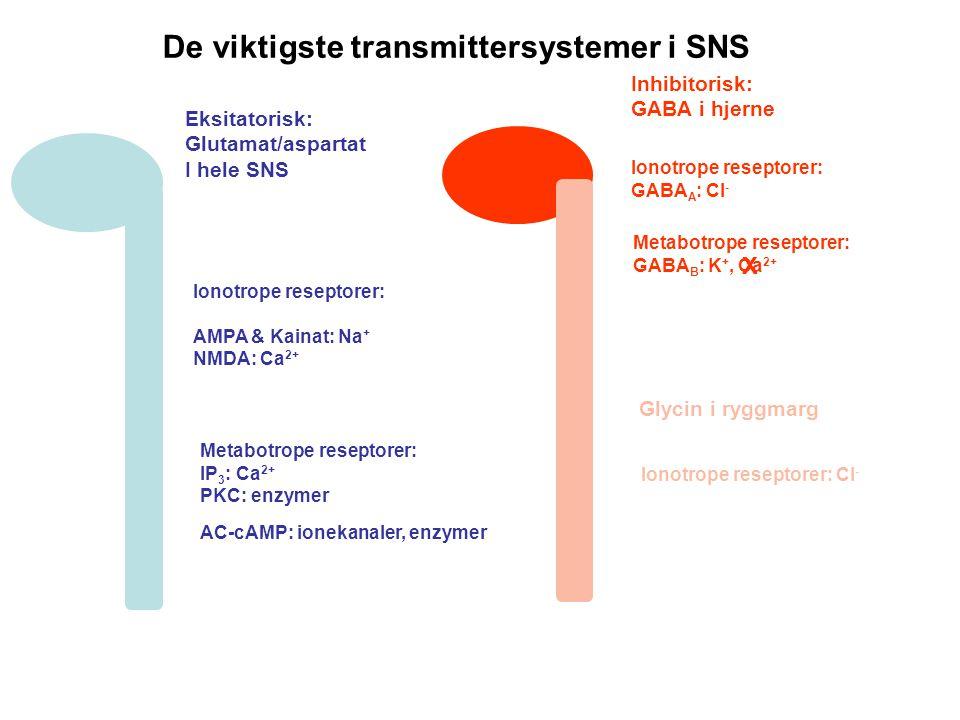 De viktigste transmittersystemer i SNS