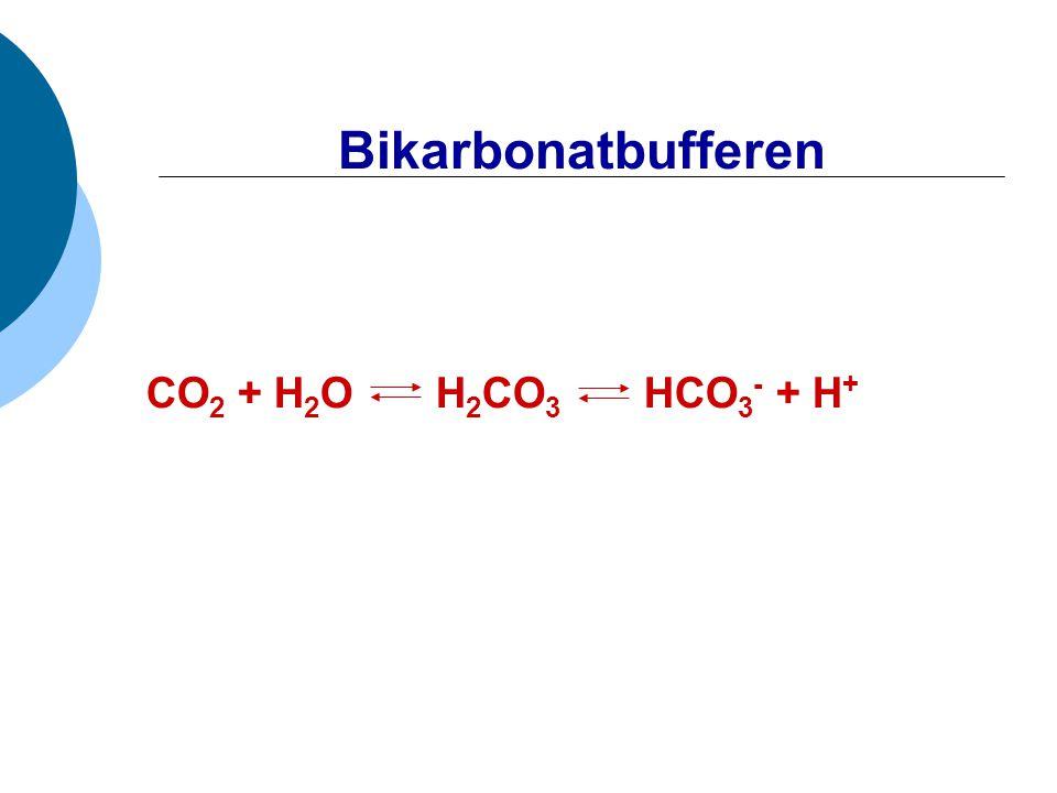 Bikarbonatbufferen CO2 + H2O H2CO3 HCO3- + H+