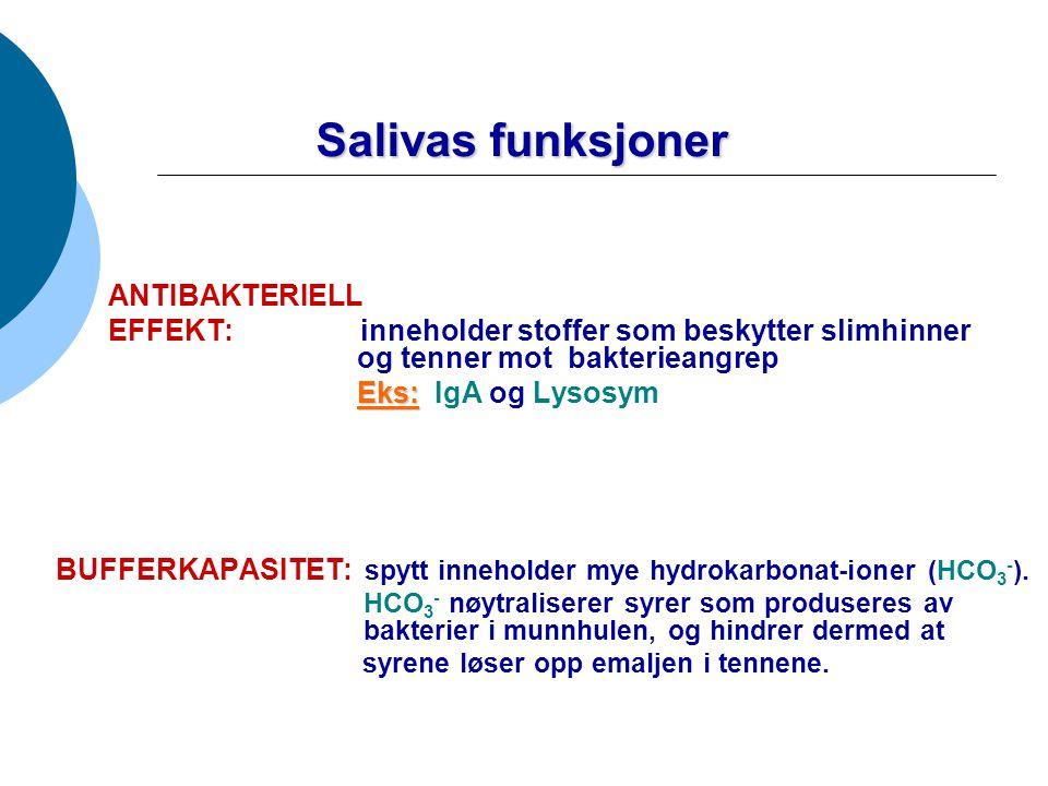 Salivas funksjoner ANTIBAKTERIELL