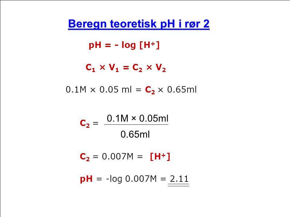 Beregn teoretisk pH i rør 2