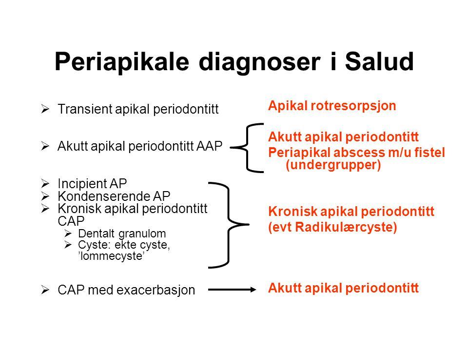 Periapikale diagnoser i Salud