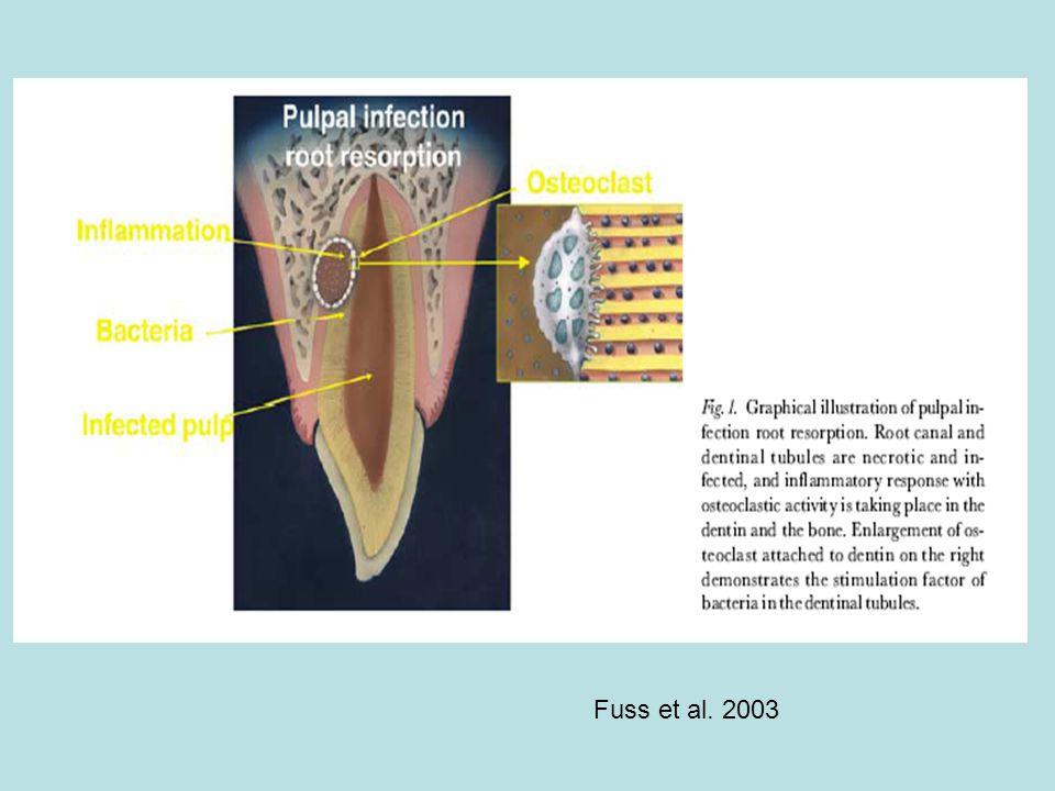Fuss et al. 2003
