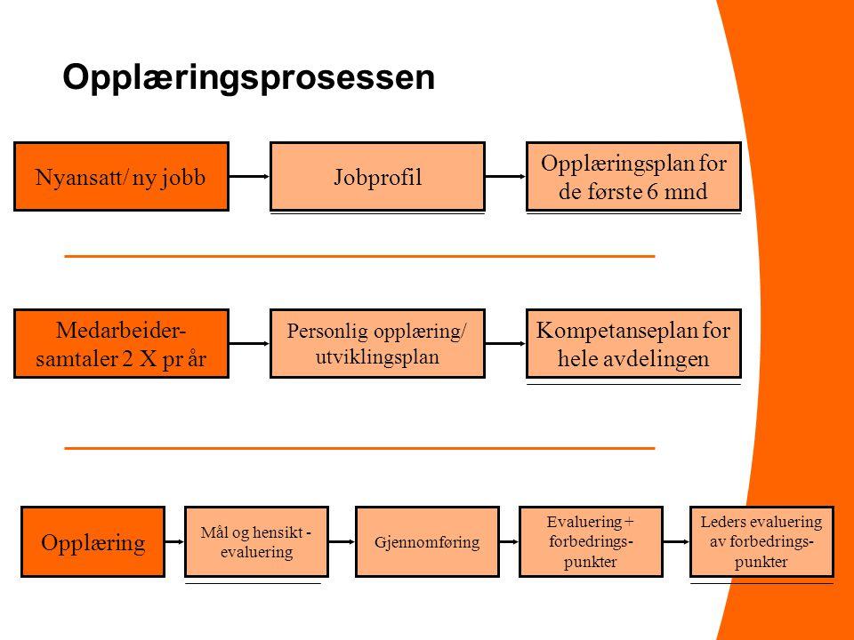 Opplæringsprosessen Nyansatt/ ny jobb Jobprofil