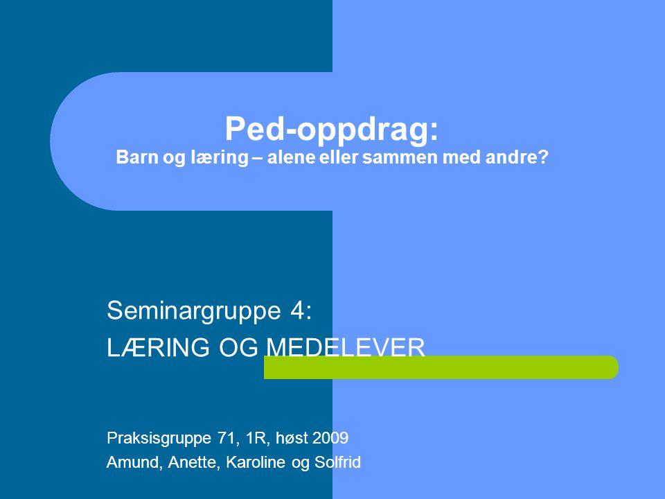Ped-oppdrag: Barn og læring – alene eller sammen med andre