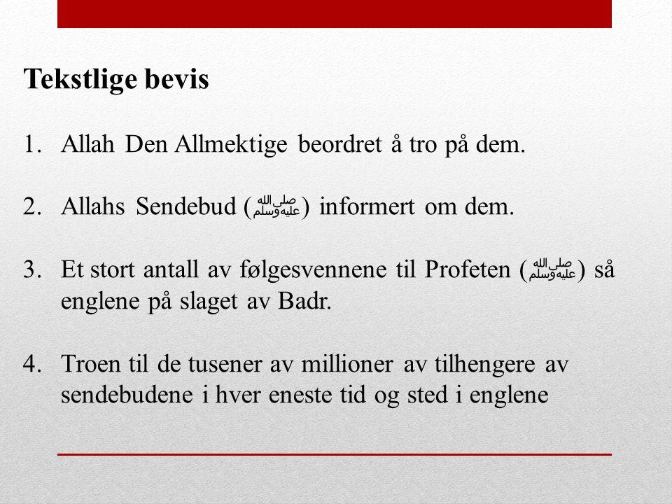 Tekstlige bevis Allah Den Allmektige beordret å tro på dem.