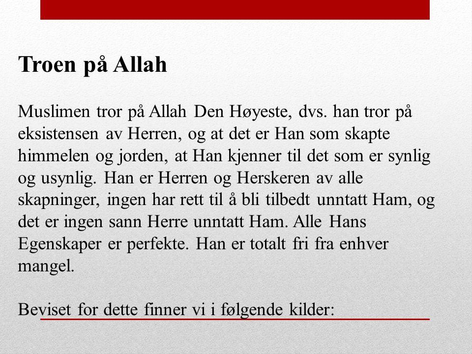 Troen på Allah