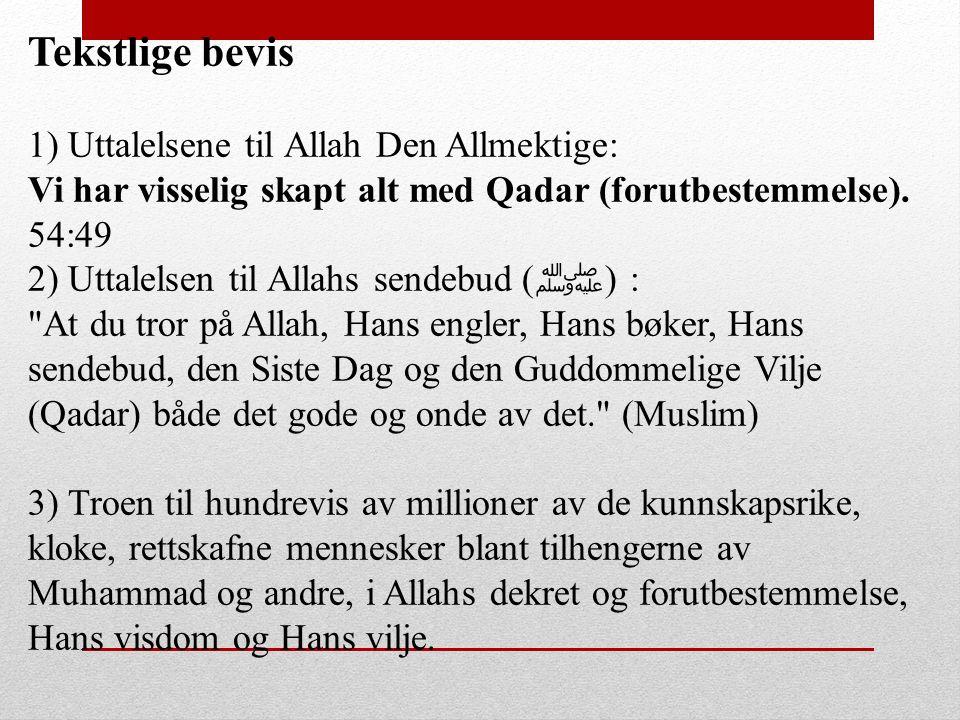 Tekstlige bevis 1) Uttalelsene til Allah Den Allmektige: