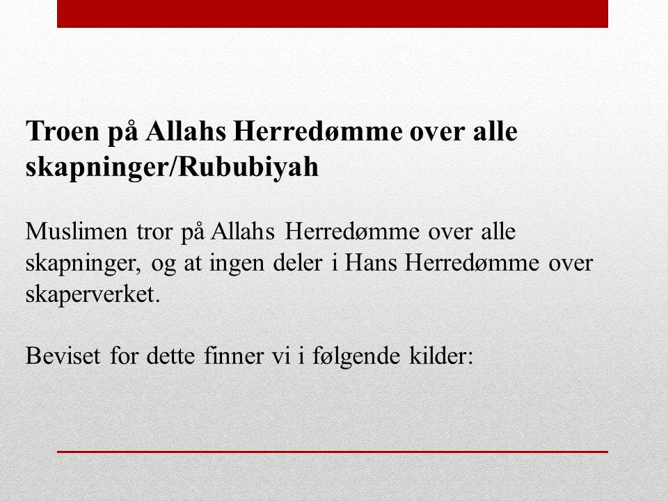 Troen på Allahs Herredømme over alle skapninger/Rububiyah