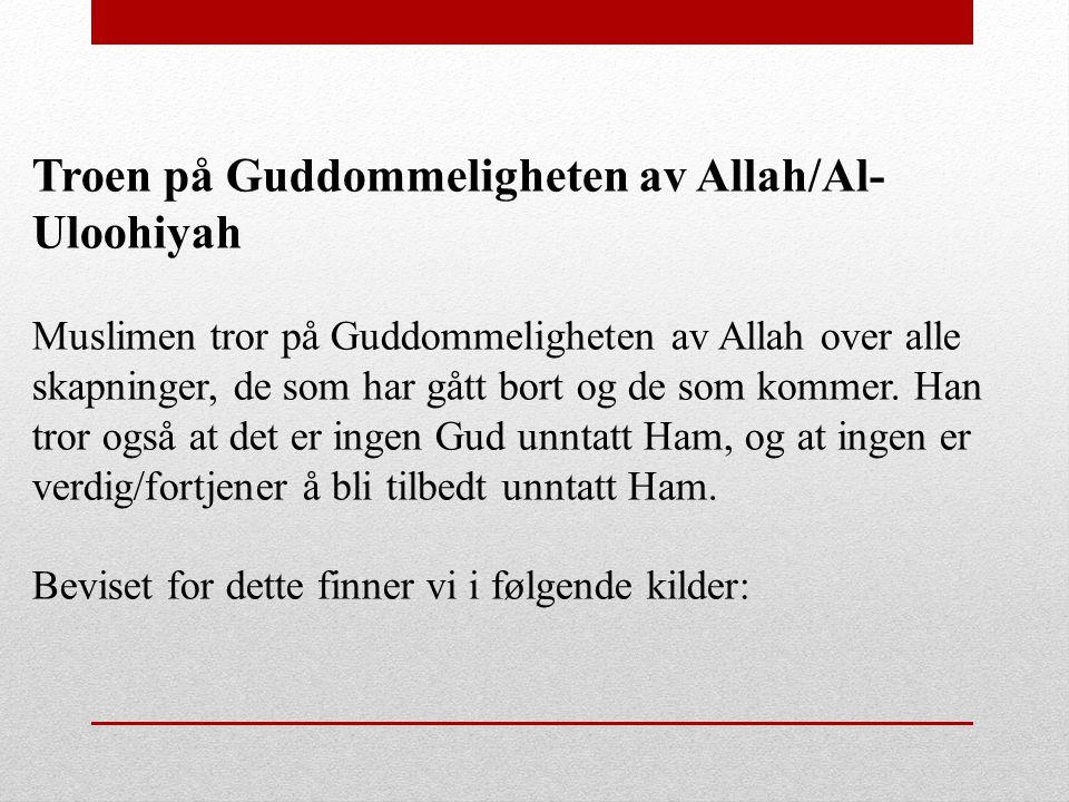 Troen på Guddommeligheten av Allah/Al-Uloohiyah
