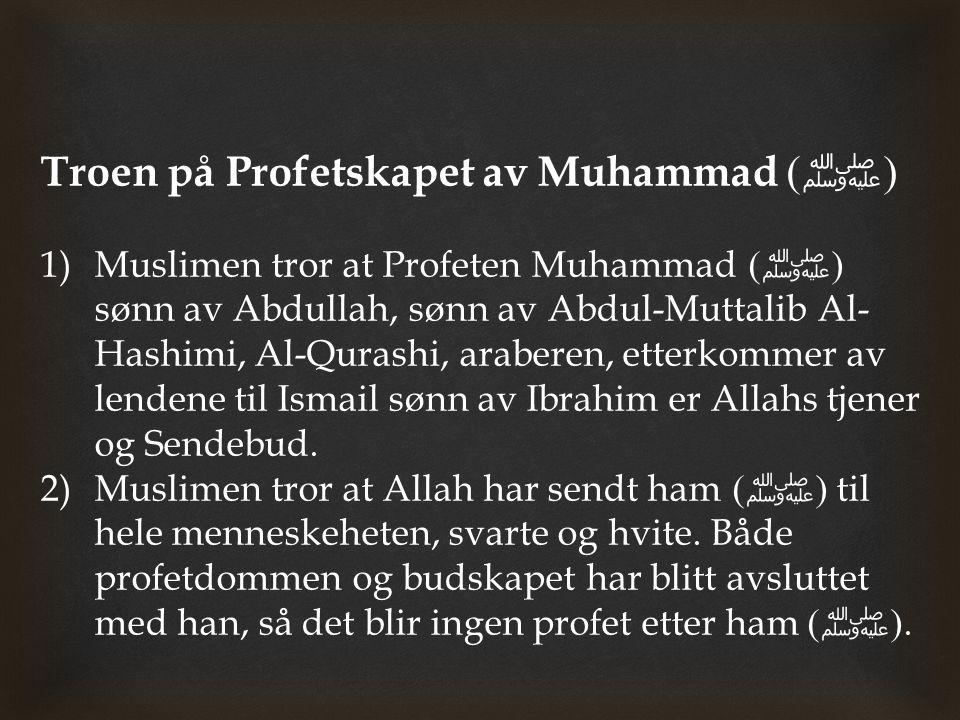 Troen på Profetskapet av Muhammad (ﷺ)