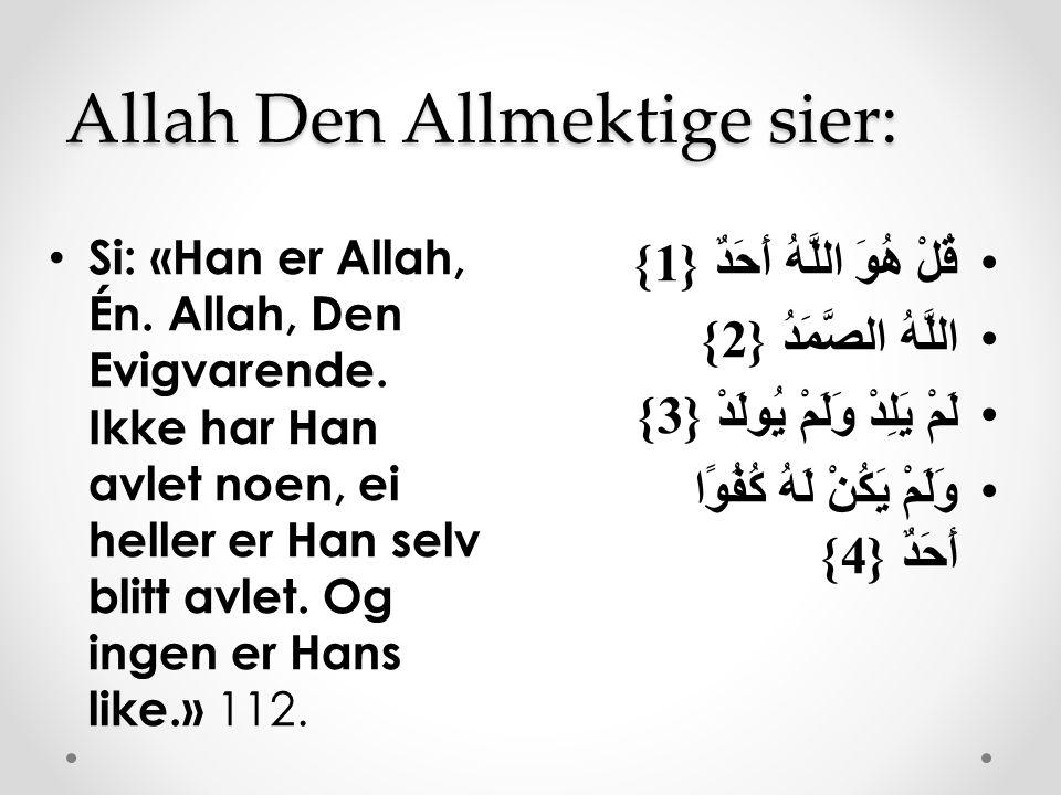 Allah Den Allmektige sier: