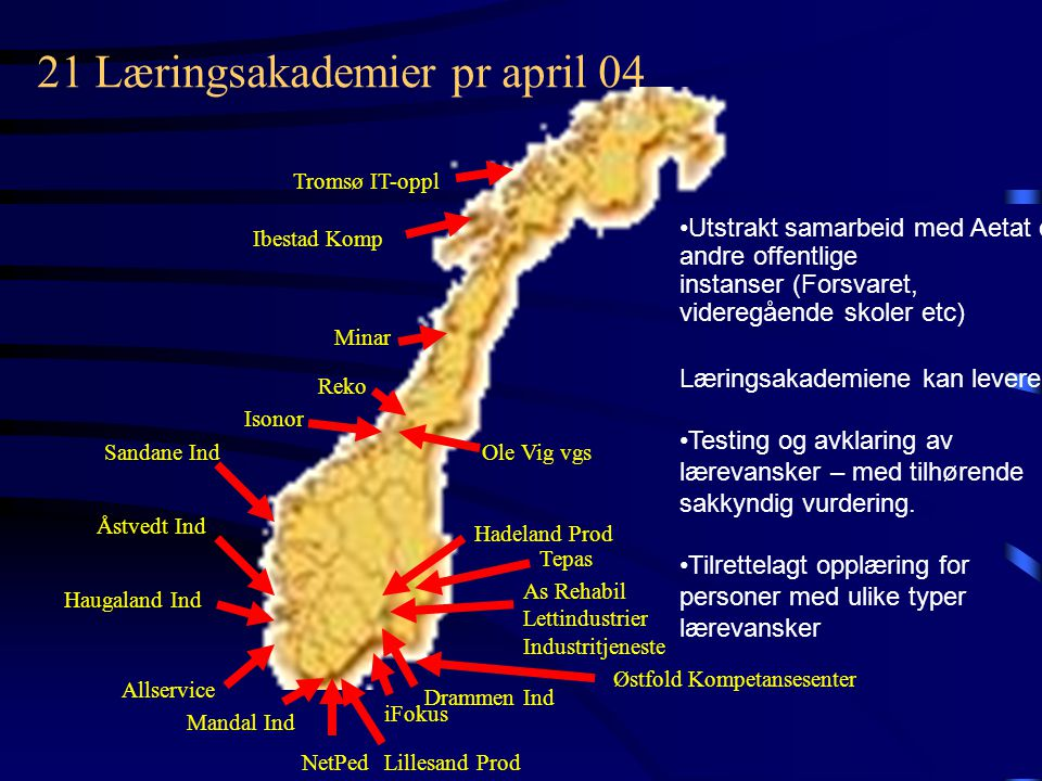 21 Læringsakademier pr april 04