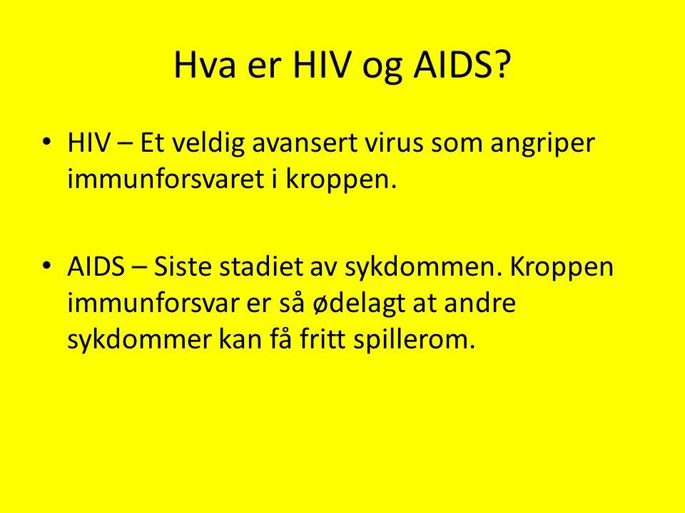 Hva er HIV og AIDS HIV – Et veldig avansert virus som angriper immunforsvaret i kroppen.