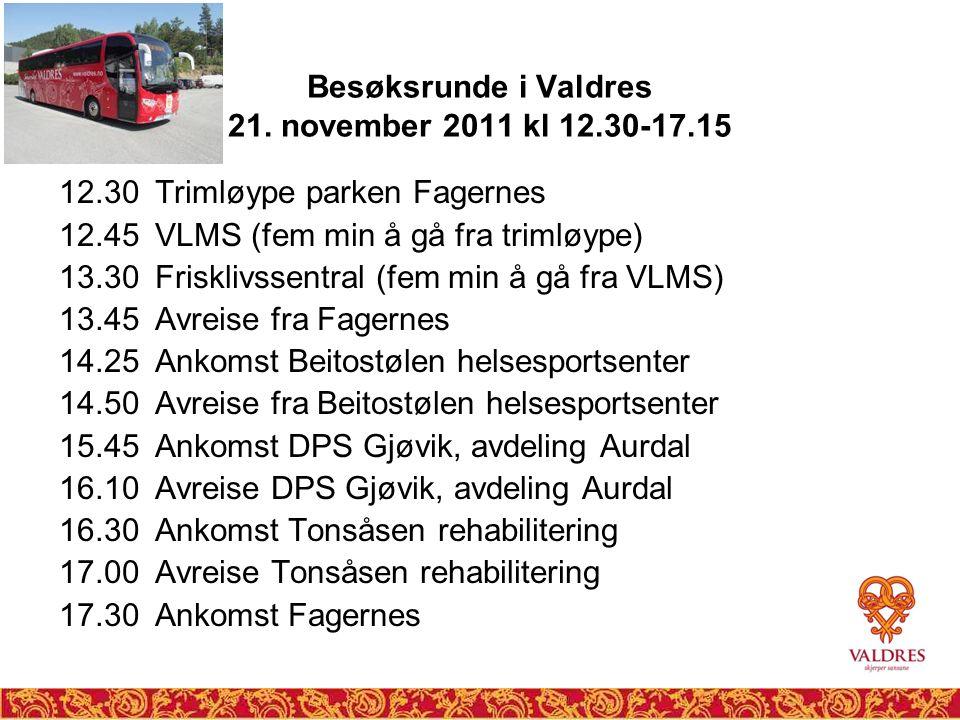Besøksrunde i Valdres 21. november 2011 kl 12.30-17.15