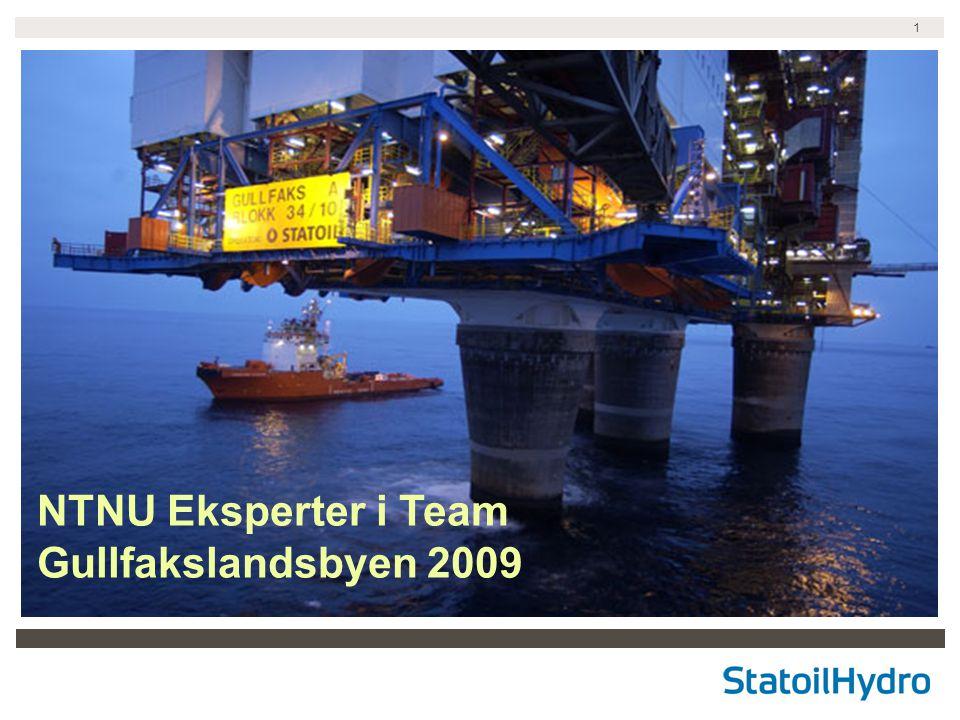 NTNU Eksperter i Team Gullfakslandsbyen 2009