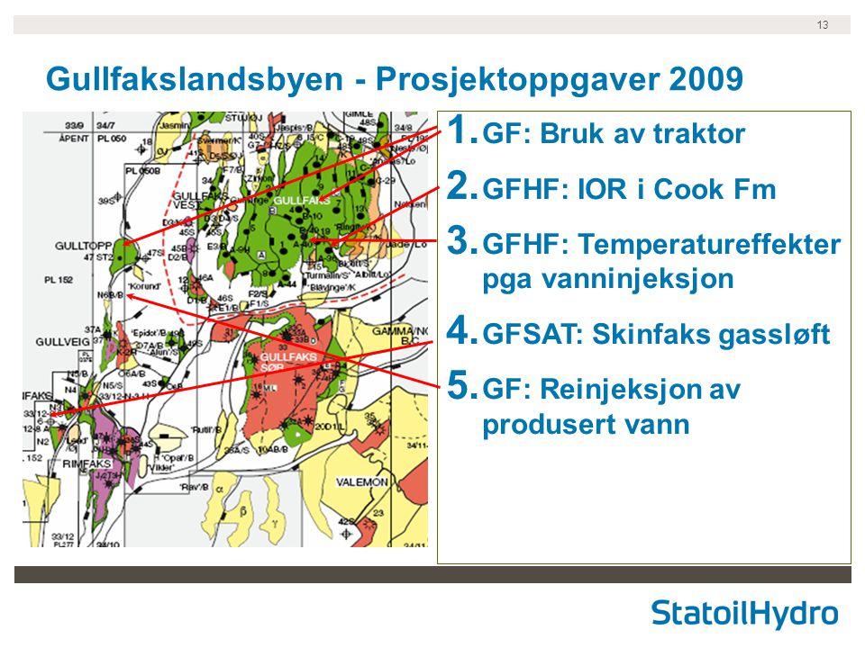 Gullfakslandsbyen - Prosjektoppgaver 2009