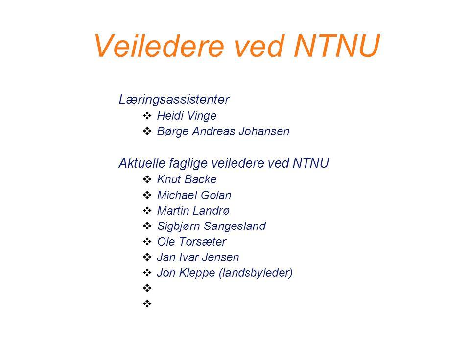Veiledere ved NTNU Læringsassistenter