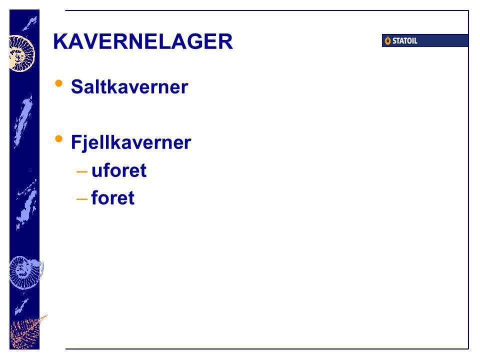KAVERNELAGER Saltkaverner Fjellkaverner uforet foret
