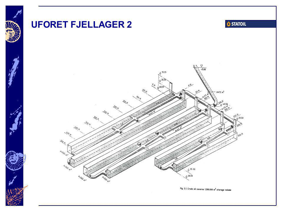 UFORET FJELLAGER 2