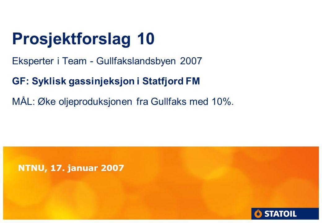 Prosjektforslag 10 Eksperter i Team - Gullfakslandsbyen 2007