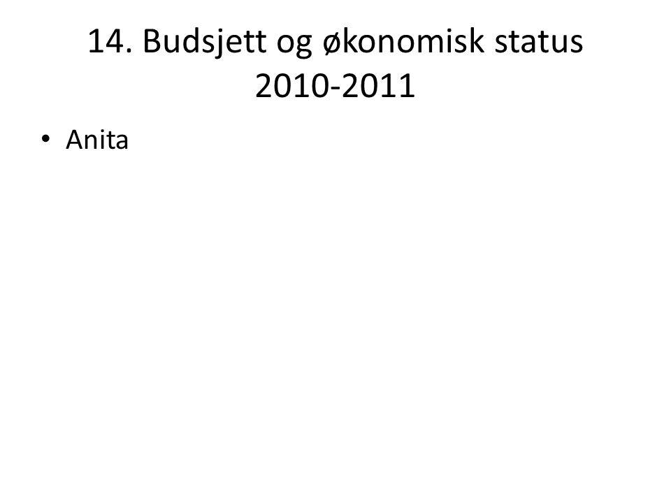 14. Budsjett og økonomisk status 2010-2011