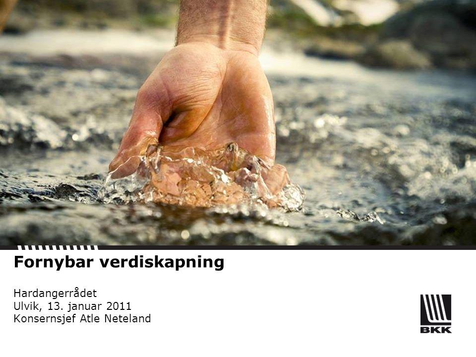 Fornybar verdiskapning Hardangerrådet Ulvik, 13