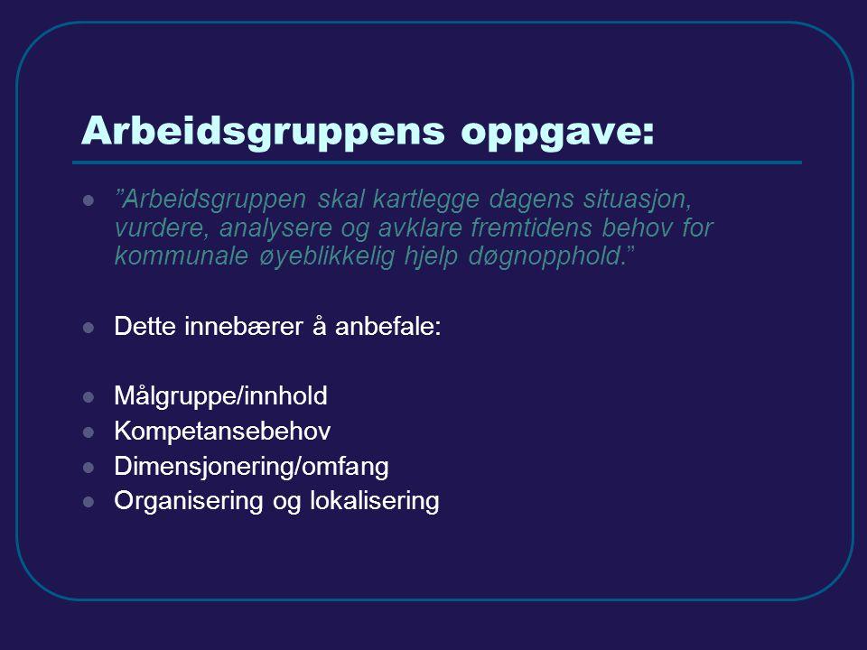 Arbeidsgruppens oppgave: