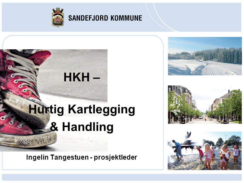 HKH – Hurtig Kartlegging & Handling Ingelin Tangestuen - prosjektleder