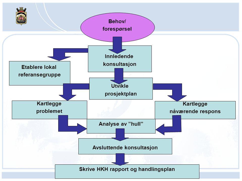 Avsluttende konsultasjon Skrive HKH rapport og handlingsplan