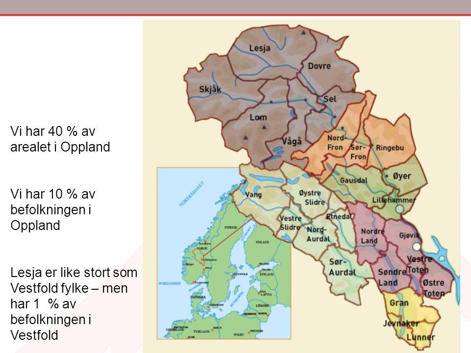 Vi har 40 % av arealet i Oppland