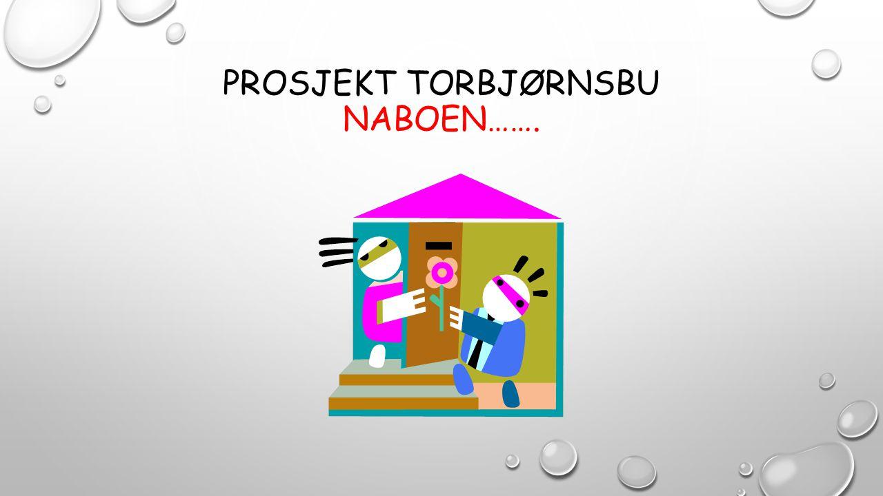 Prosjekt torbjørnsbu naboen…….