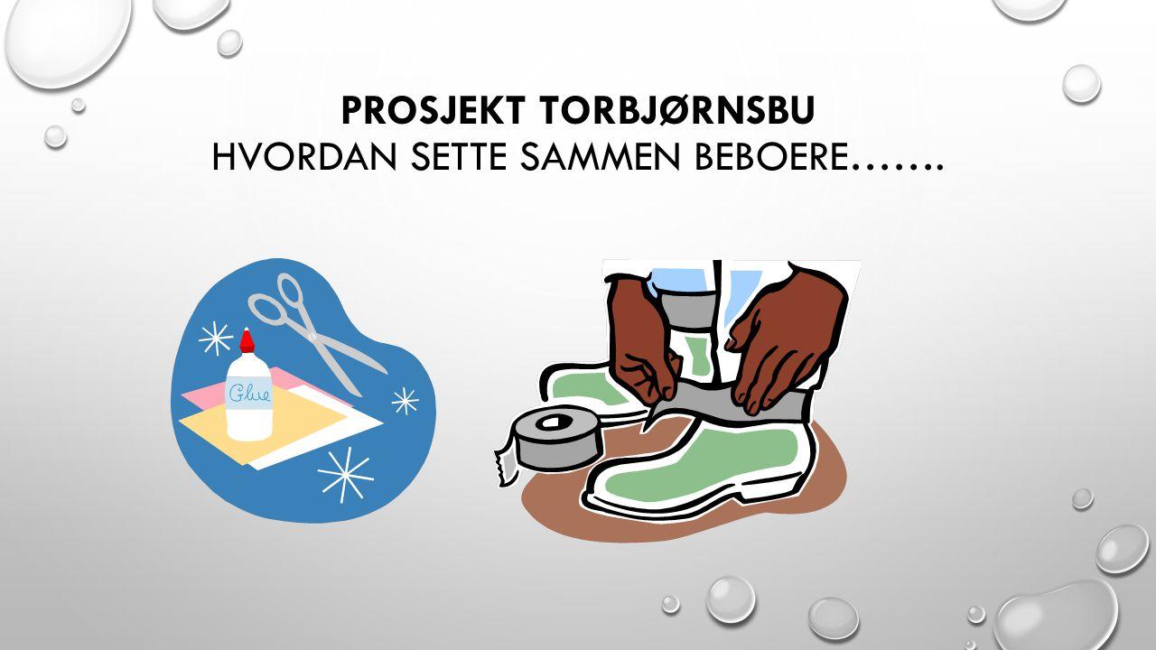 Prosjekt Torbjørnsbu Hvordan sette sammen beboere…….