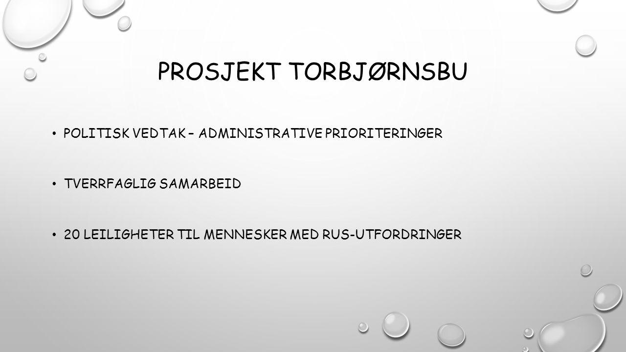 Prosjekt Torbjørnsbu POLITISK VEDTAK – ADMINISTRATIVE PRIORITERINGER