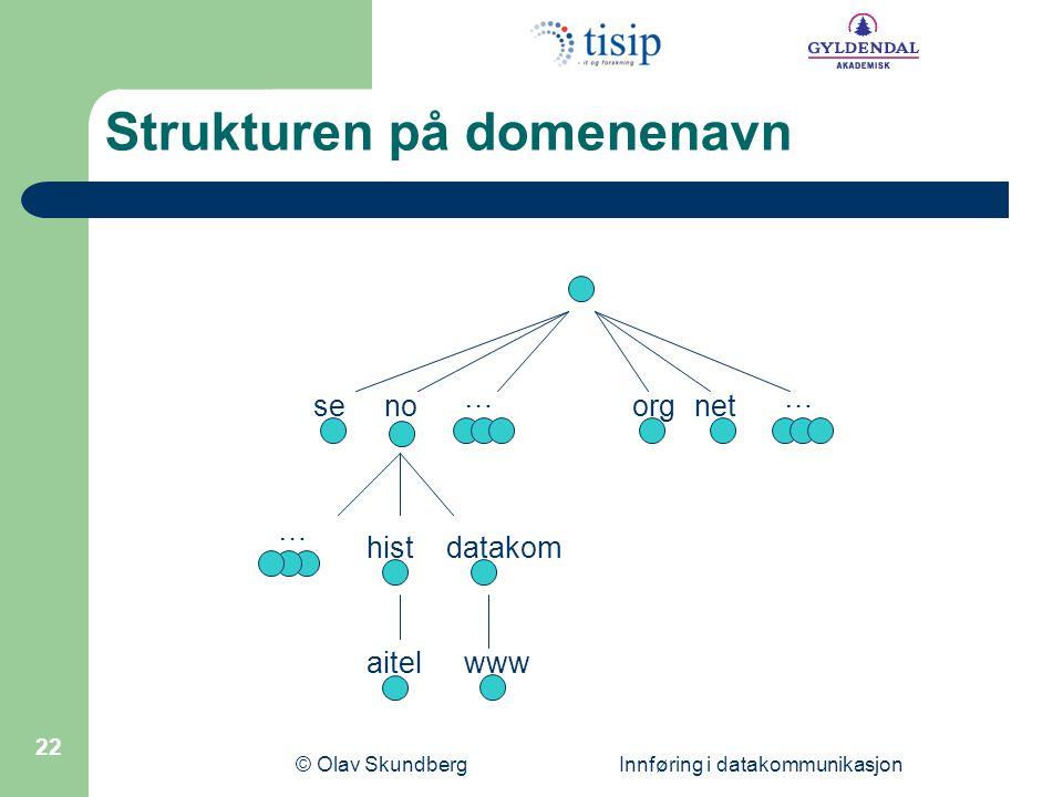 Strukturen på domenenavn