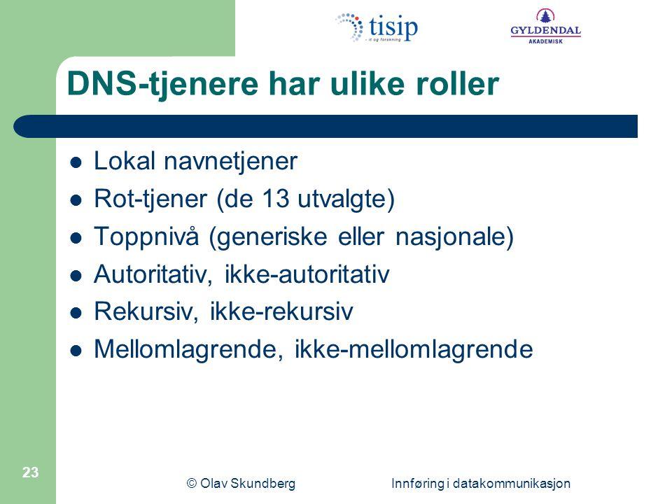 DNS-tjenere har ulike roller