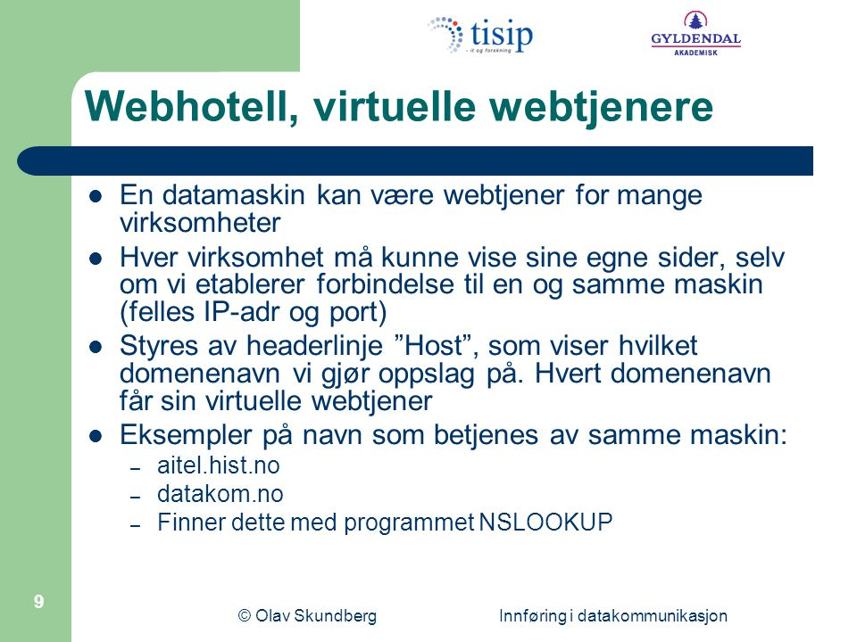 Webhotell, virtuelle webtjenere