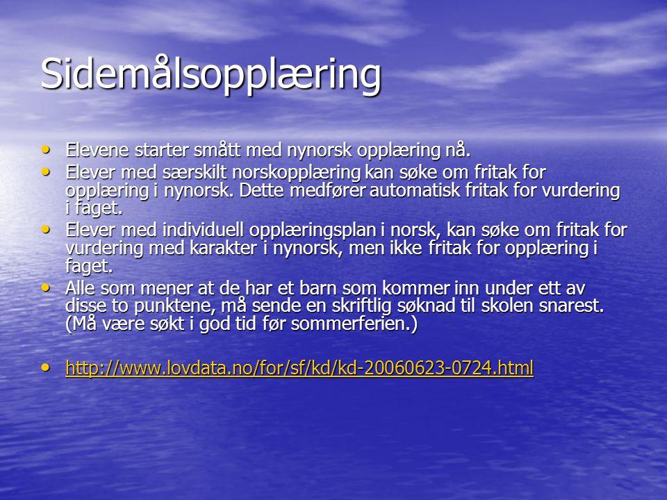 Sidemålsopplæring Elevene starter smått med nynorsk opplæring nå.