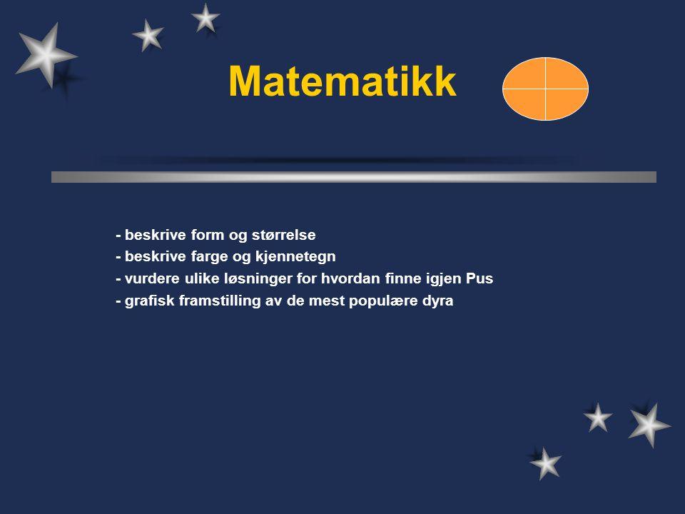 Matematikk - beskrive form og størrelse - beskrive farge og kjennetegn