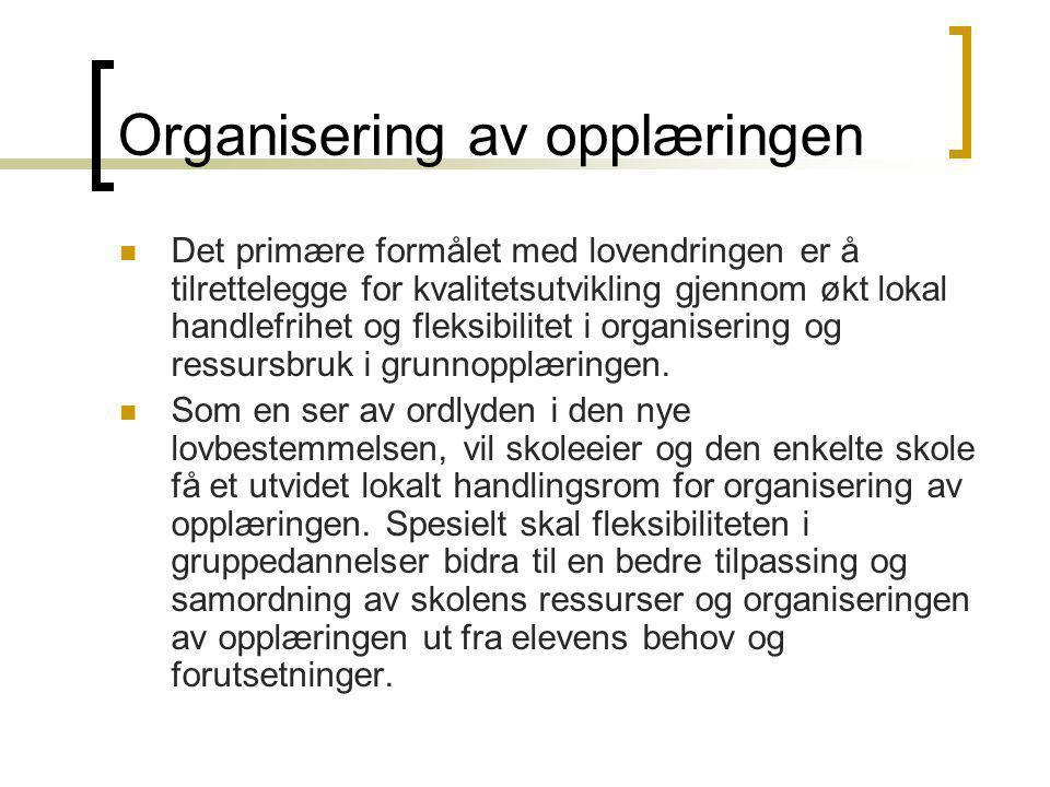 Organisering av opplæringen