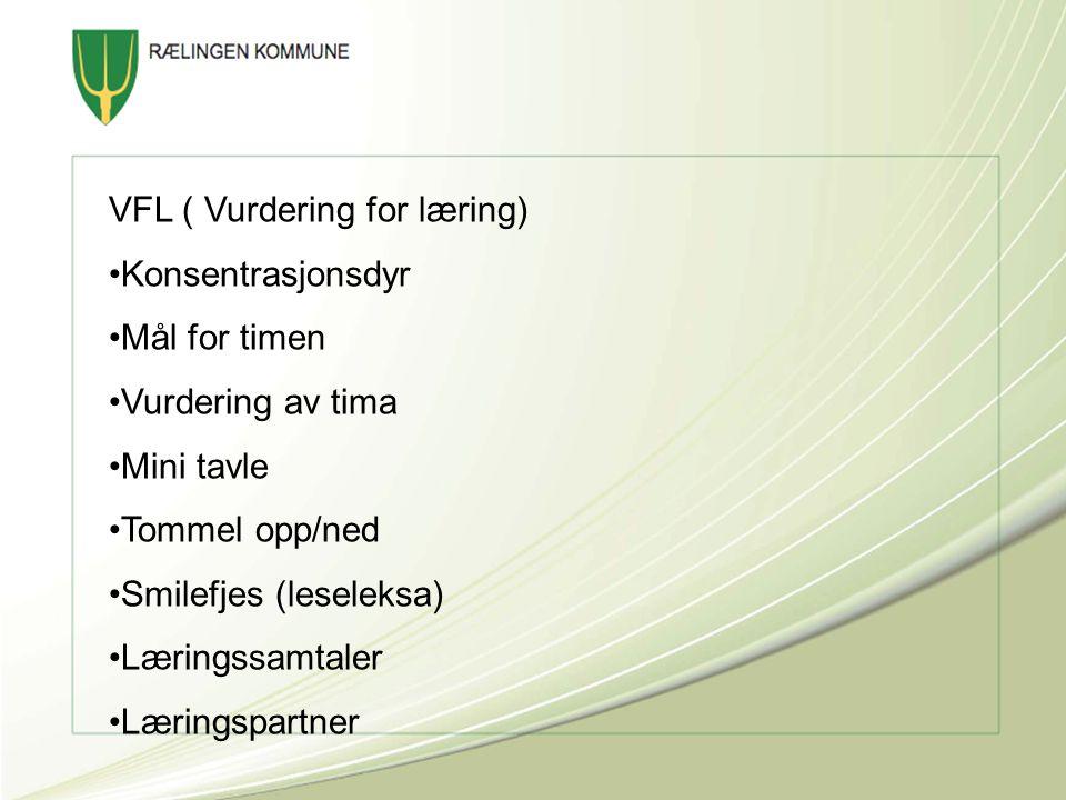VFL ( Vurdering for læring)