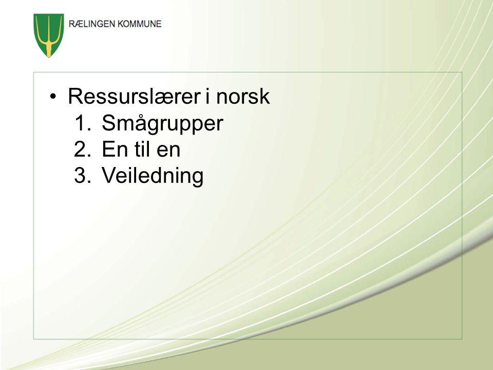 Ressurslærer i norsk Smågrupper En til en Veiledning