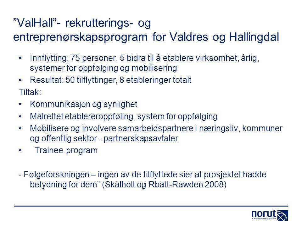 ValHall - rekrutterings- og entreprenørskapsprogram for Valdres og Hallingdal