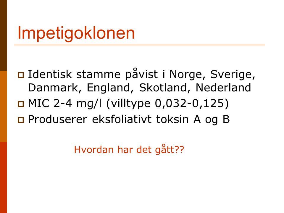Impetigoklonen Identisk stamme påvist i Norge, Sverige, Danmark, England, Skotland, Nederland. MIC 2-4 mg/l (villtype 0,032-0,125)