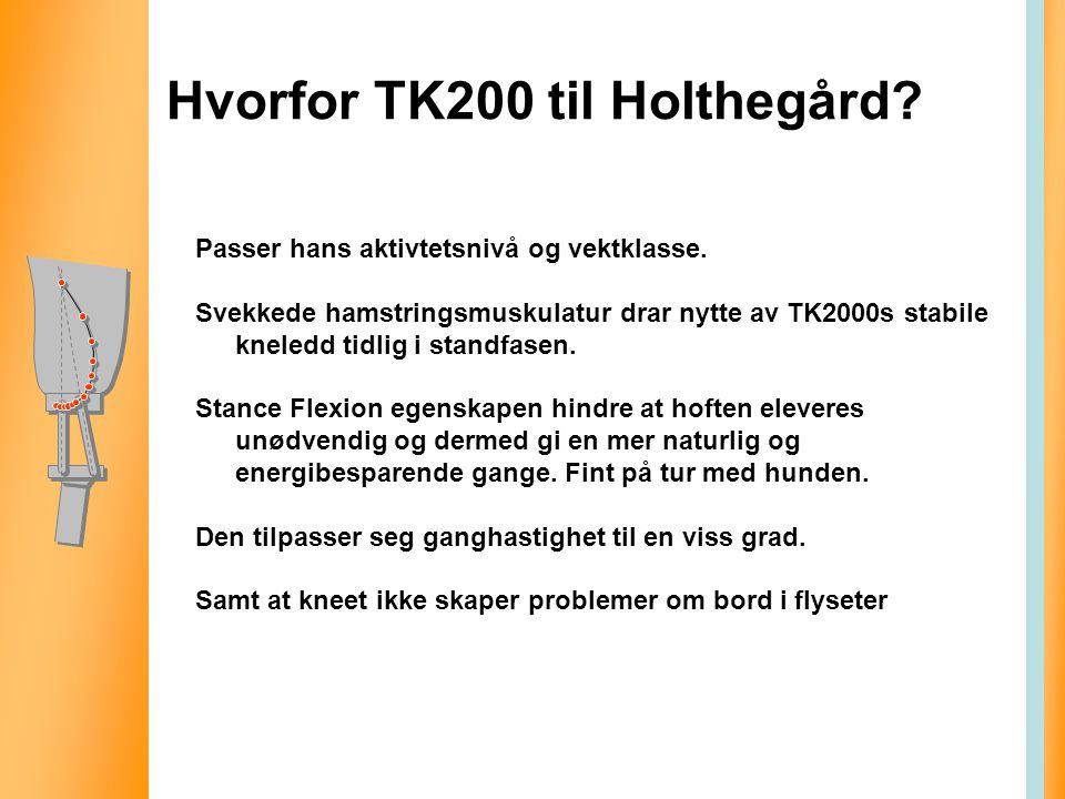 Hvorfor TK200 til Holthegård