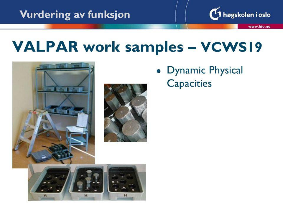 VALPAR work samples – VCWS19