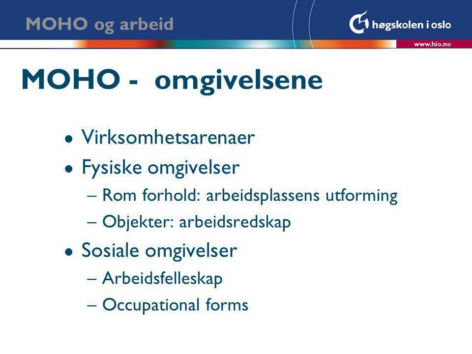 MOHO - omgivelsene Virksomhetsarenaer Fysiske omgivelser