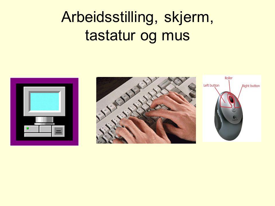 Arbeidsstilling, skjerm, tastatur og mus